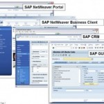 SAP NWBC (Netweaver Business Client)